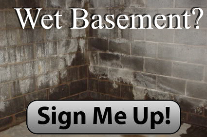 wet basement mi