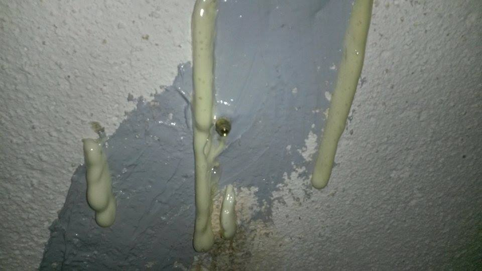 basement wall crack livonia