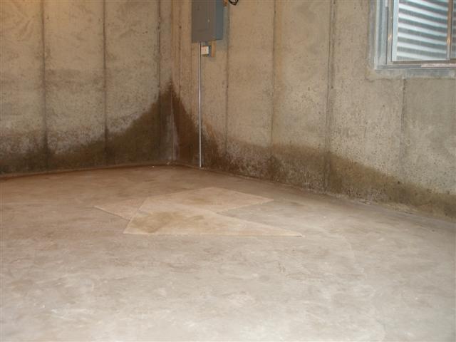 leaky basement repair cost mi