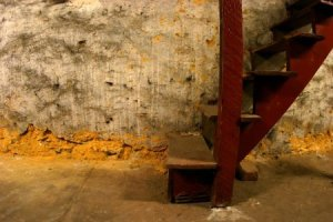 basement leak guys mi