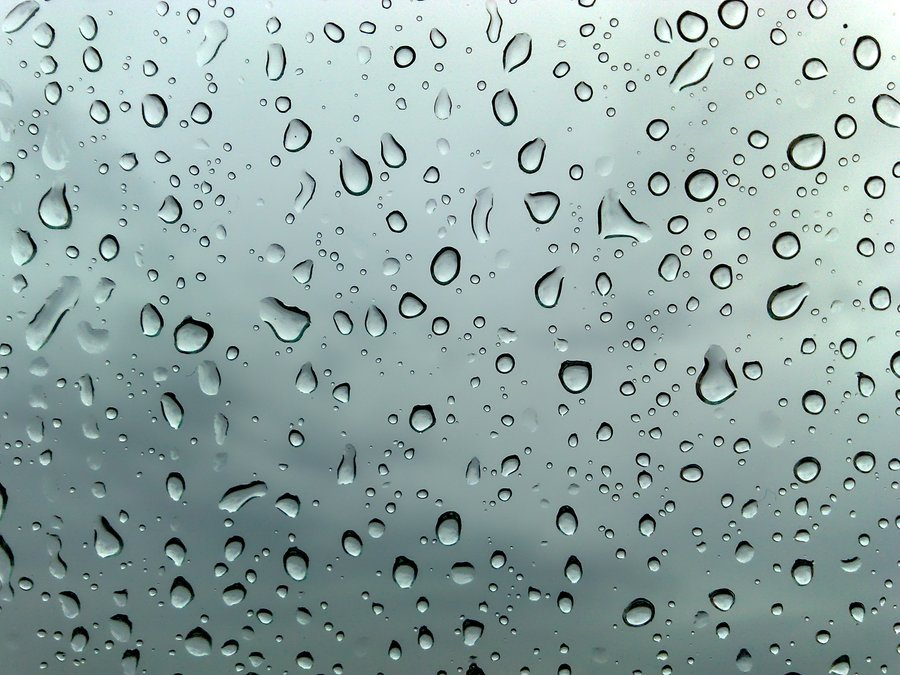 waterproofing help mi