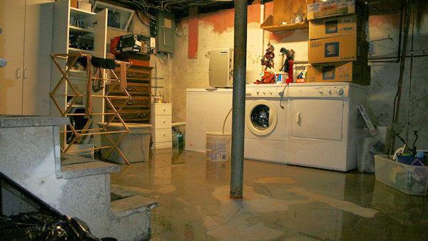 basement leaking in southeast mi