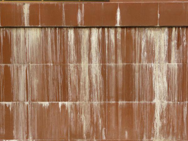 leaky basement walls in MI